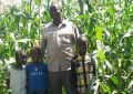 Update on Kenya Maize Plantation