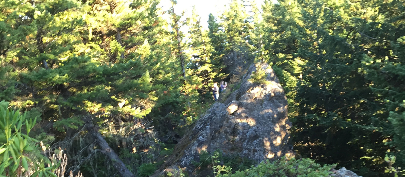 Prayer Time on Mount Zion, 2015 – Olympia National Park, WA